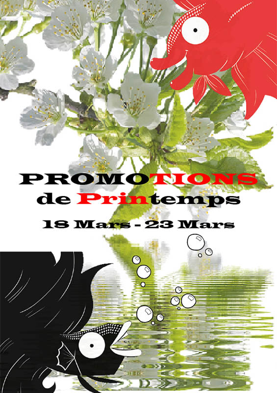 Semaine 11 - Promotions de Printemps